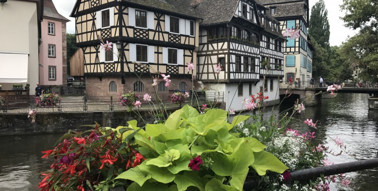 17_07_10 Straßburg-Reise
