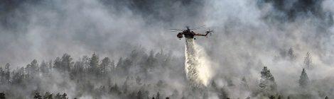 """Podiumsdiskussion """"Der EU-Zivilschutz-Mechanismus in Zeiten von Dürresommern und zunehmender Waldbrandgefahr"""""""