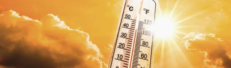 Hitzewellen in Europa: Wie Europa Naturkatastrophen im Alltag bewältigen muss